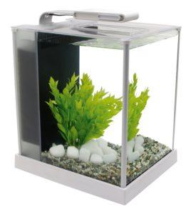 best nano tank for betta fish