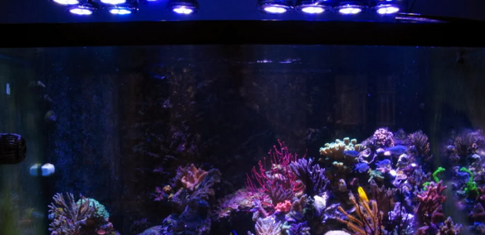 wifi-165w-led-aquarium-light-review