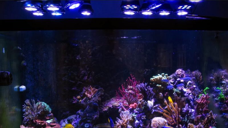Wifi Controlled Aquarium LED Lighting (for 165w)