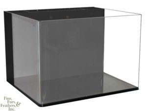 JBL Cube Tank Review