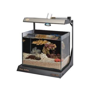 Schuber Wright Fancy Rimless Fish Tank