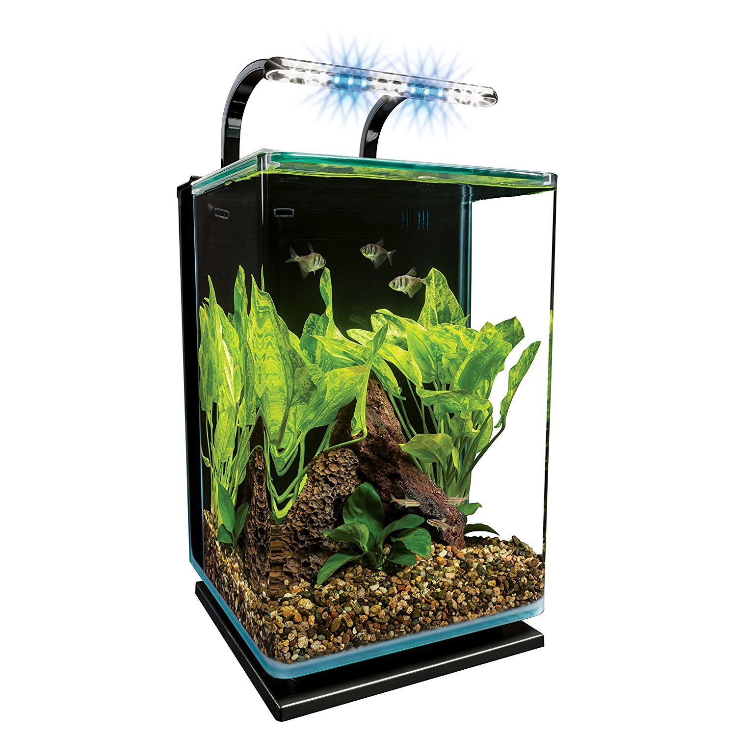 Marineland 5 galleon Contour Glass Aquarium Kit review