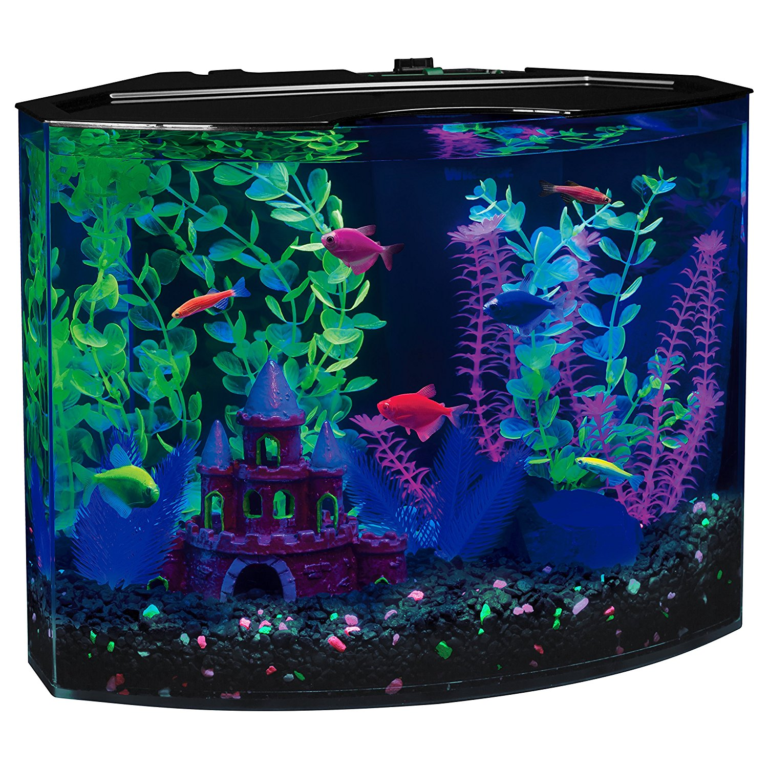 glofish 5 gallon aquarium kit review